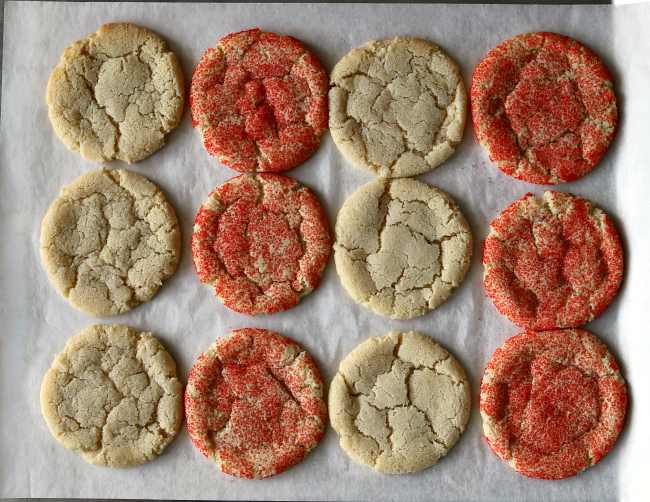 Gluten-free Sugar Cookies on baking sheet just out of oven