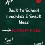 Back to School Gluten-free Lunchbox Snack Ideas