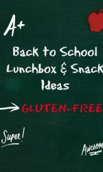 Back to School Gluten-free Lunchbox Snack Ideas