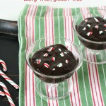 Chocolate Mint Pudding {Dairy-free, Gluten-free} So rich and creamy. Couldn't tell it was dairy-free!