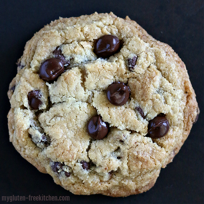 single gluten-free chocolate chip cookie