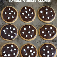 No-Bake S'mores Cookies {Gluten-free, Top 8 free}