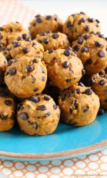 Gluten-free Dairy-free Pumpkin Chocolate Chip Mini-Muffins. Nut-free too!