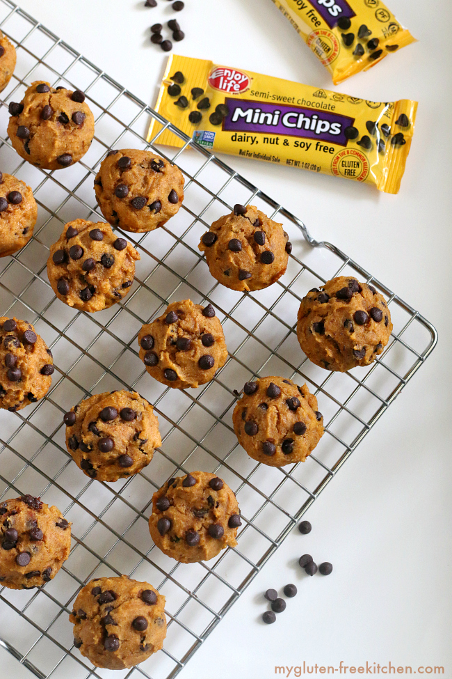 Allergy Friendly Pumpkin Chocolate Chip Mini-Muffins. Recipe free of gluten, dairy, soy, corn, and nuts!