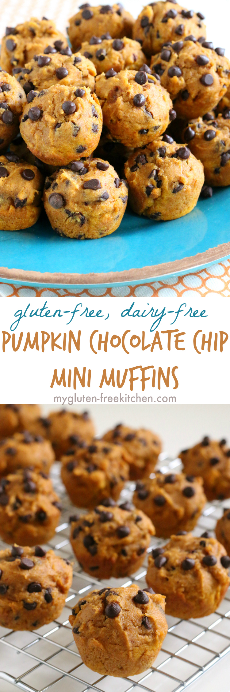 Gluten-free Dairy-free Pumpkin Muffins with Chocolate Chips. Easy, freezer friendly recipe that's nut-free too!