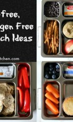 Gluten-free Top 8 Allergen Free School Lunch Ideas. No sandwiches!
