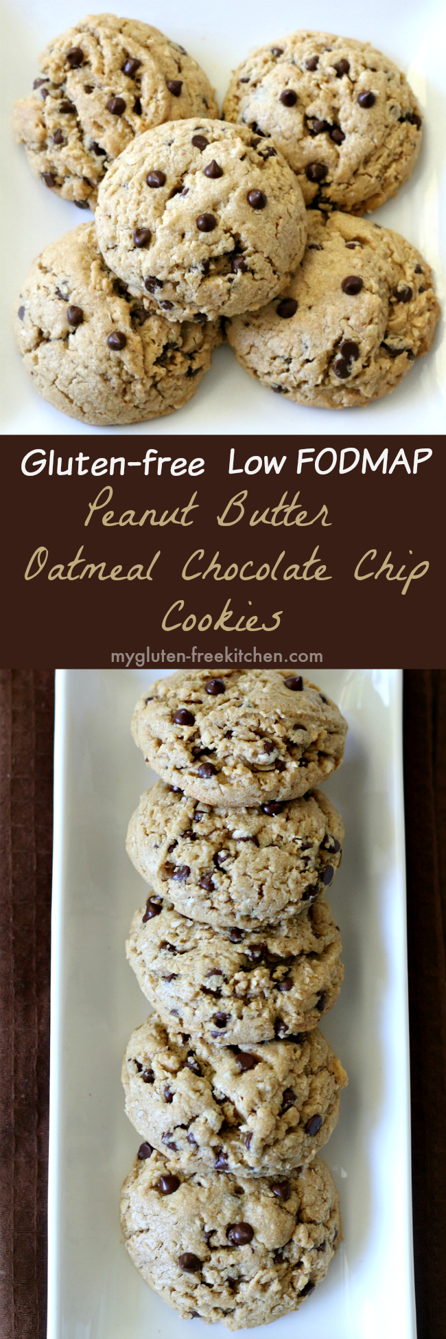 Gluten-free Low FODMAP Peanut Butter Oatmeal Chocolate Chip Cookies Recipe