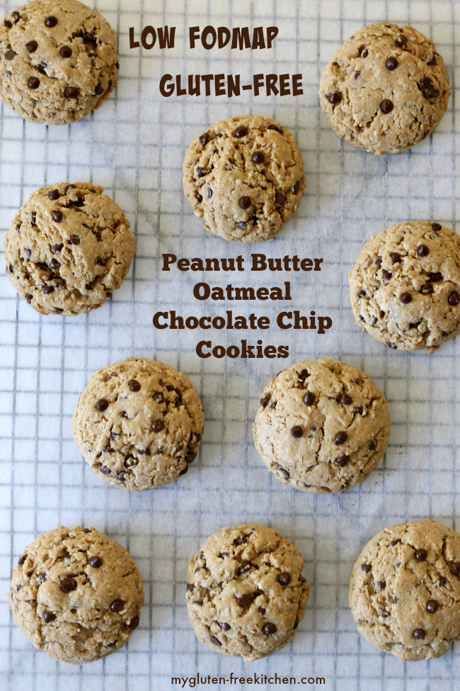 Low FODMAP Gluten-free Peanut Butter Oatmeal Chocolate Chip Cookies Recipe
