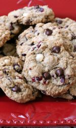 Gluten-free Oatmeal Cranberry Chocolate Chip Cookies