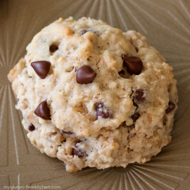 Gluten-free dairy-free banana oatmeal chocolate chip cookie
