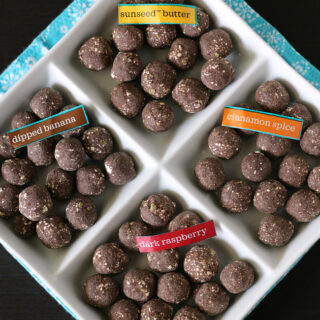 Chocolate Protein Bites from Enjoy Life Gluten-free and top allergen free